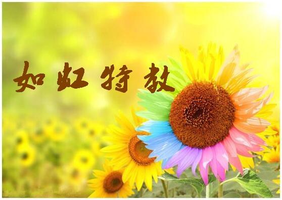 【宝特校·如虹特教】第四期 |教育札记